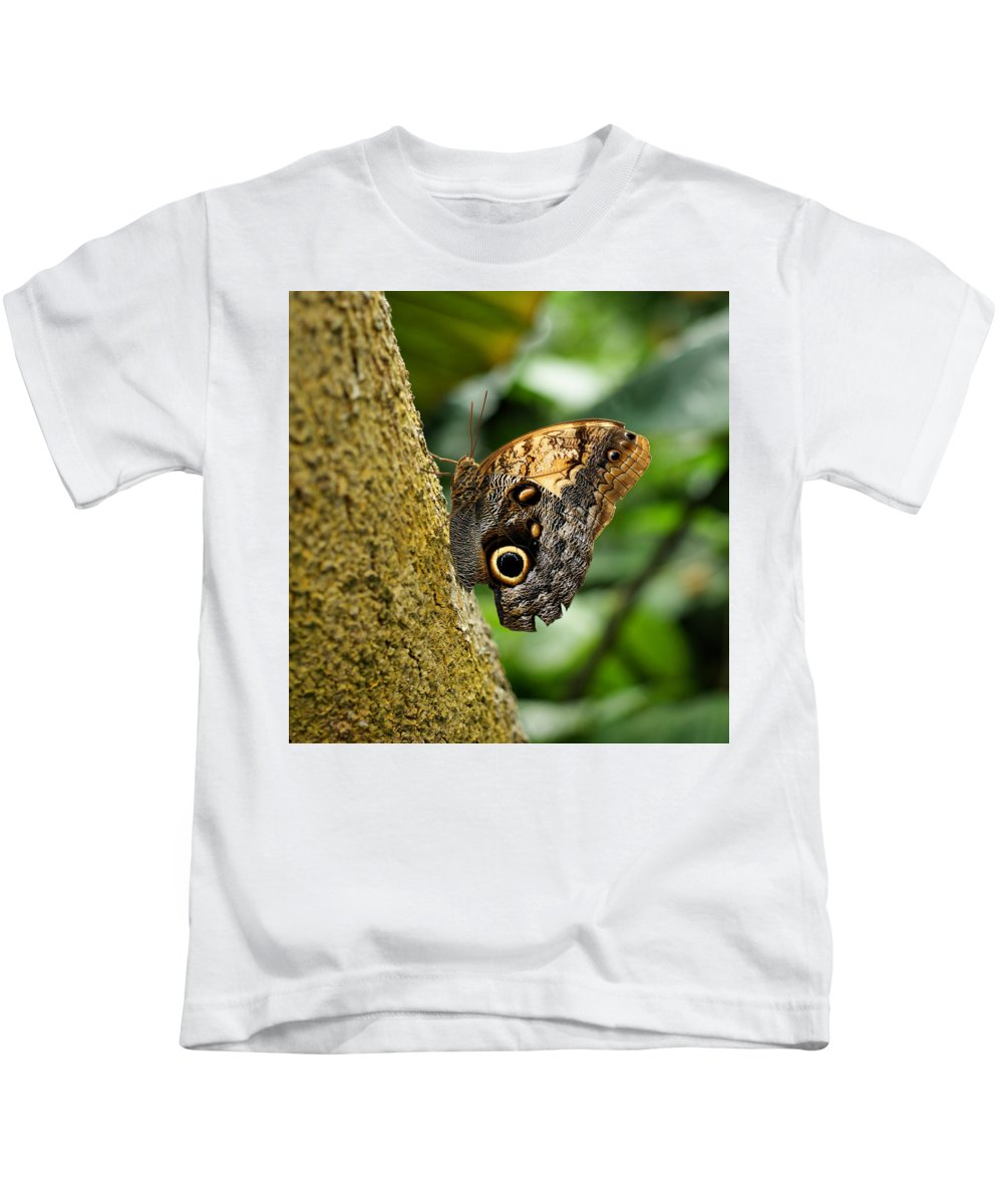 Butterfly Kids T-Shirt featuring the photograph Owl Butterfly by Sandy Keeton