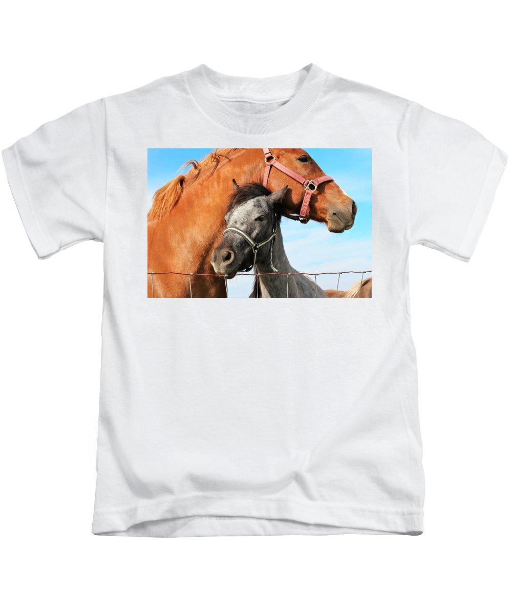 Horses Kids T-Shirt featuring the photograph Pals by Kelly Foreman