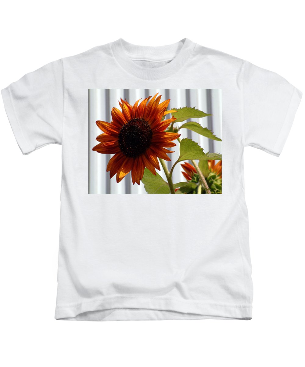 Brown Kids T-Shirt featuring the photograph Peerless by RC DeWinter