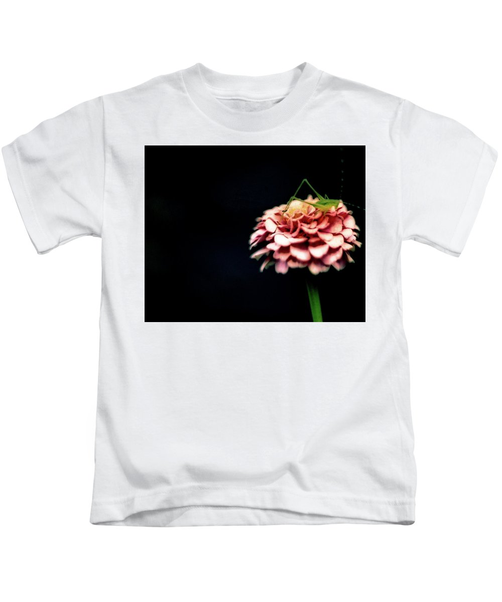 Pink Kids T-Shirt featuring the photograph Pink Zinnia by Mitford Fontaine