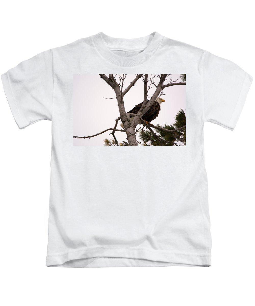 American Bald Eagle Kids T-Shirt featuring the photograph Planning An Escape by Linda Kerkau