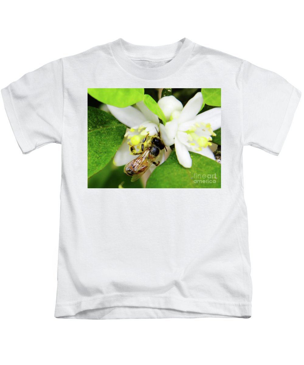 Orange Blossom Kids T-Shirt featuring the photograph Pollen - Covered - Bee by D Hackett