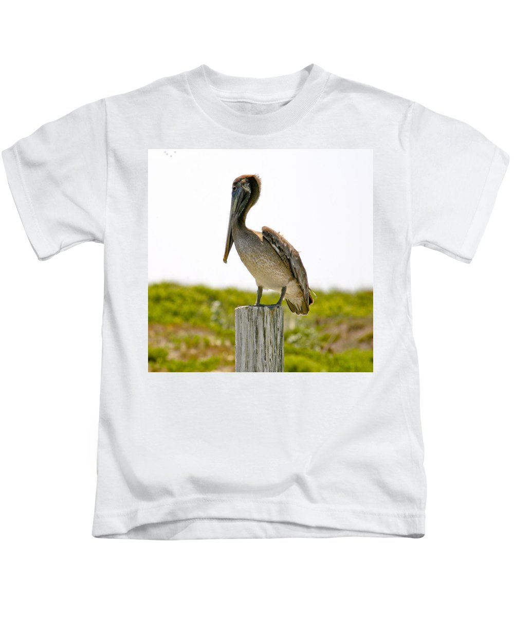 Pelican Kids T-Shirt featuring the photograph Pretty Pelican by Marilyn Hunt