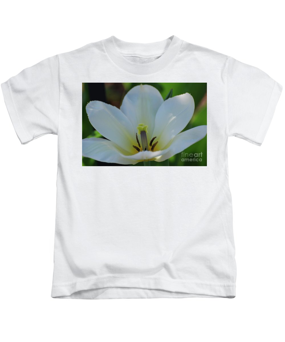 Tulip Kids T-Shirt featuring the photograph Pretty Perfect White Tulip Flower Blossom In The Spring by DejaVu Designs