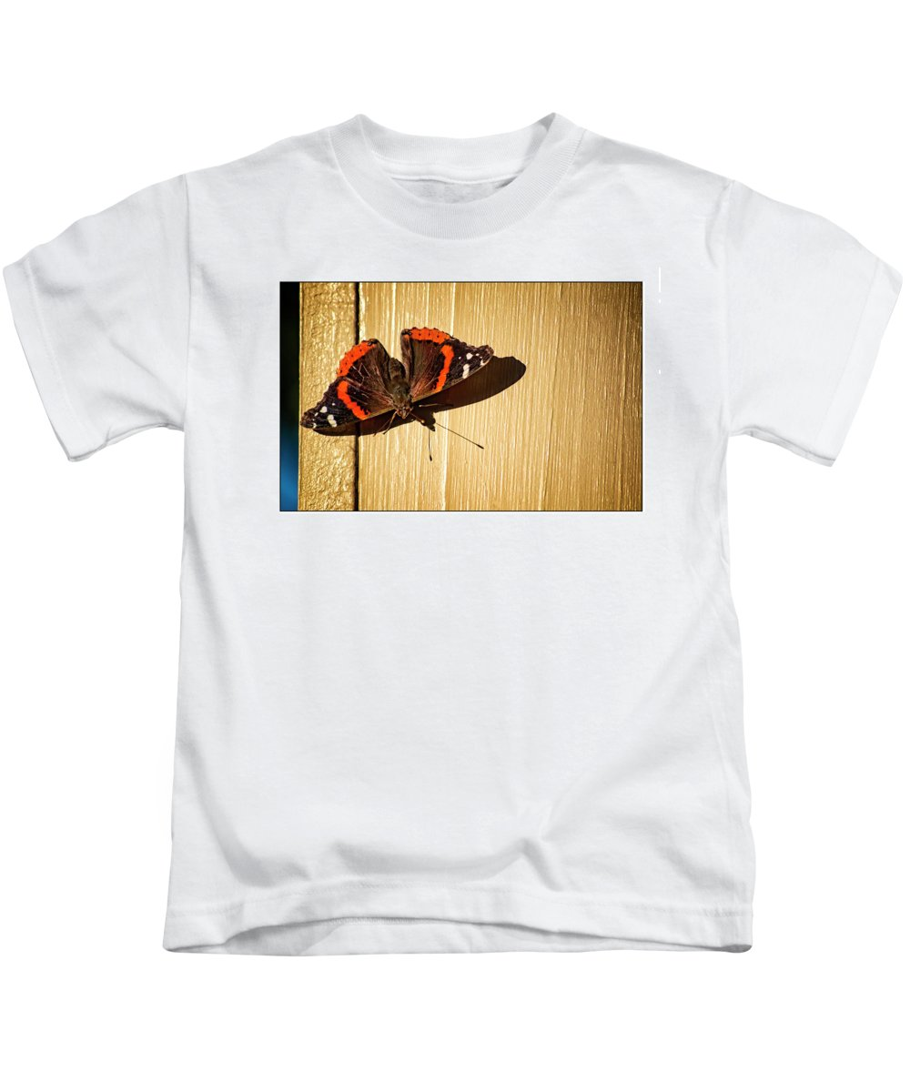 Red Admiral Kids T-Shirt featuring the photograph Red Admiral by Marshall Barth