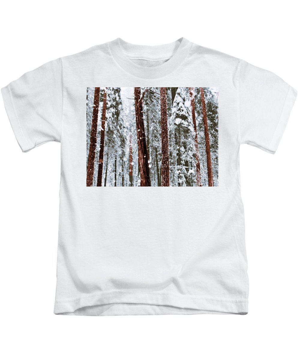 Landscape Kids T-Shirt featuring the photograph Redwoods In Snow by Karen W Meyer