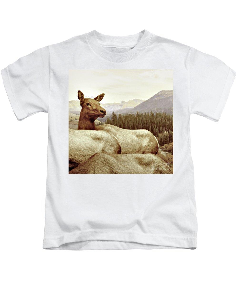 Deer Kids T-Shirt featuring the photograph Resting Deer by Zena Zero