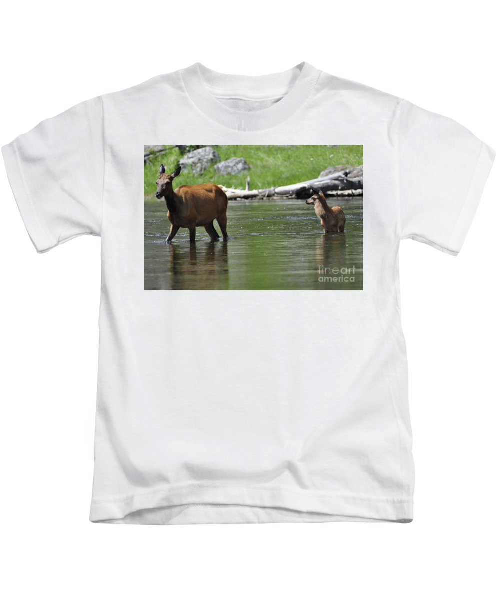 Wildlife Kids T-Shirt featuring the photograph River Crossing by Vicky Tubb
