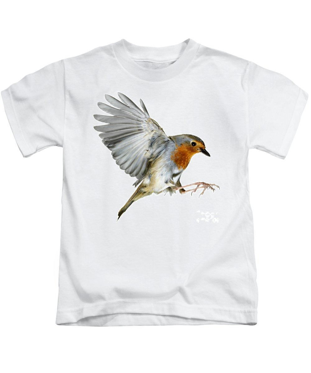 Erithacus Rubecula Kids T-Shirt featuring the photograph Robin Alighting by Warren Photographic