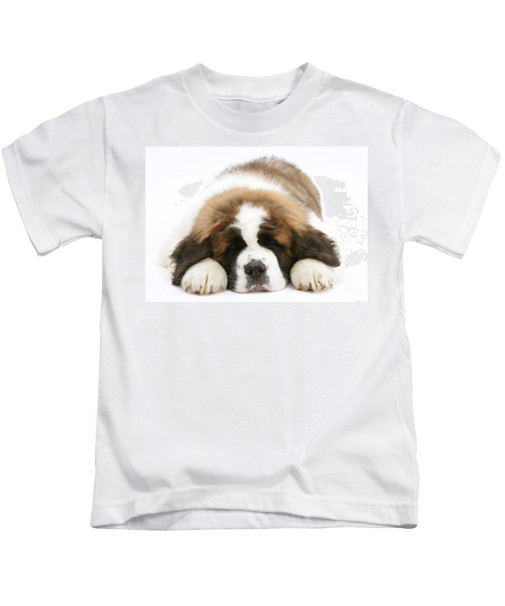 Animal Kids T-Shirt featuring the photograph Saint Bernard Puppy Sleeping by Mark Taylor