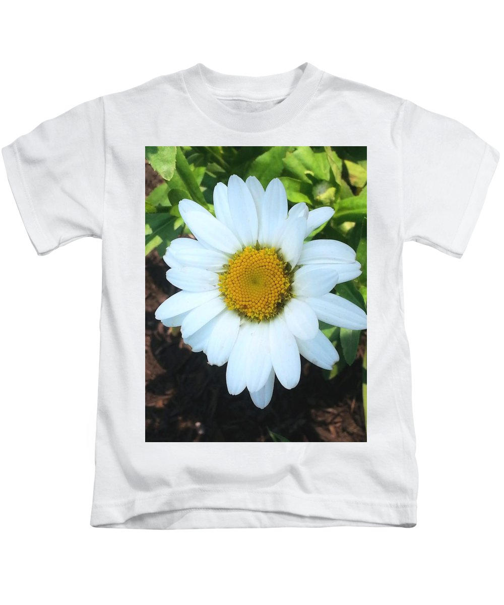 Daisy Kids T-Shirt featuring the photograph Single Daisy by Shelly Dixon
