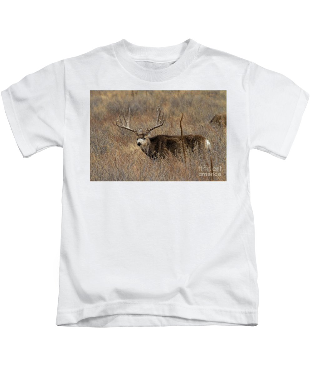 Mule Deer. Mule Deer Buck Kids T-Shirt featuring the photograph Snow Showers by Jim Garrison