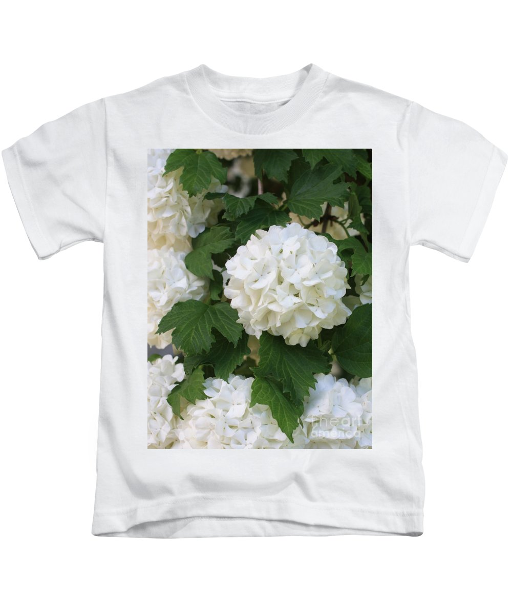 Snowball Tree Kids T-Shirt featuring the photograph Snowball Tree With Delicate Leaves by Carol Groenen