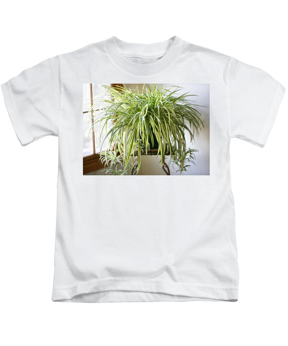 Spider Plant Kids T-Shirt featuring the photograph Spider Plant by Marilyn Hunt