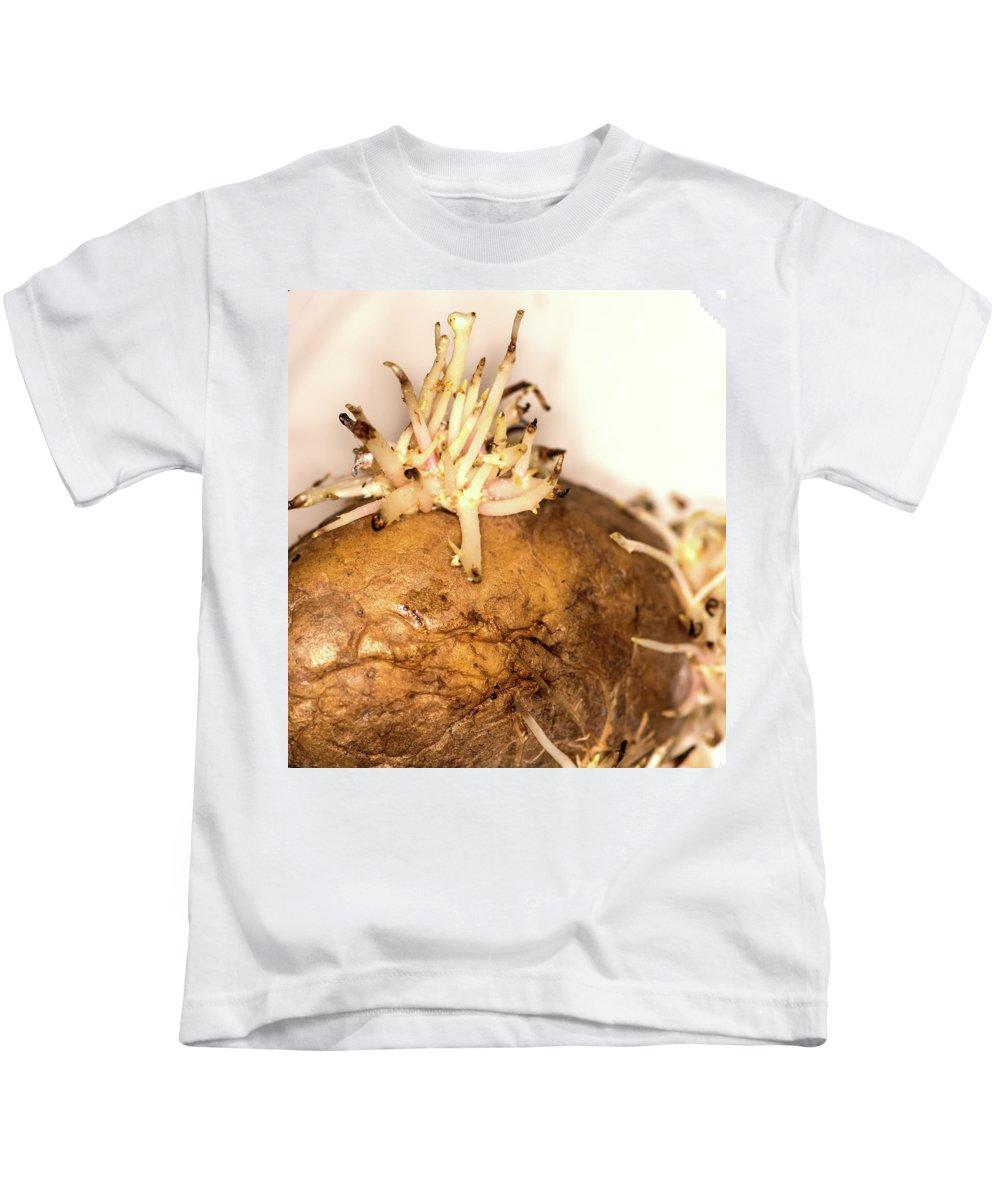 Potato Kids T-Shirt featuring the photograph Sprouting Potato by Jarmo Honkanen