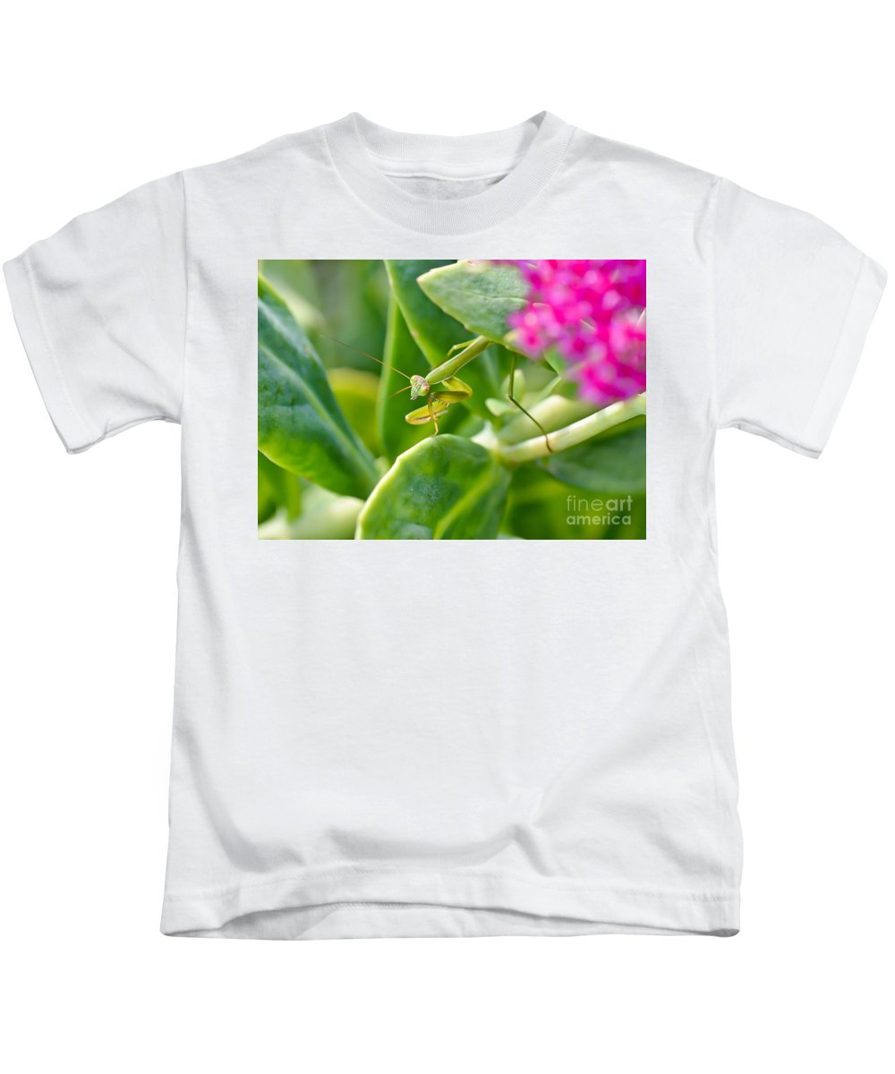 Praying Mantis Kids T-Shirt featuring the photograph Stepping Out by Kerri Farley