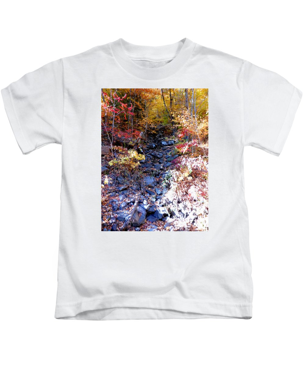 Stepping Stones Kids T-Shirt featuring the painting Stepping Stones At Autumn Forest by Jeelan Clark