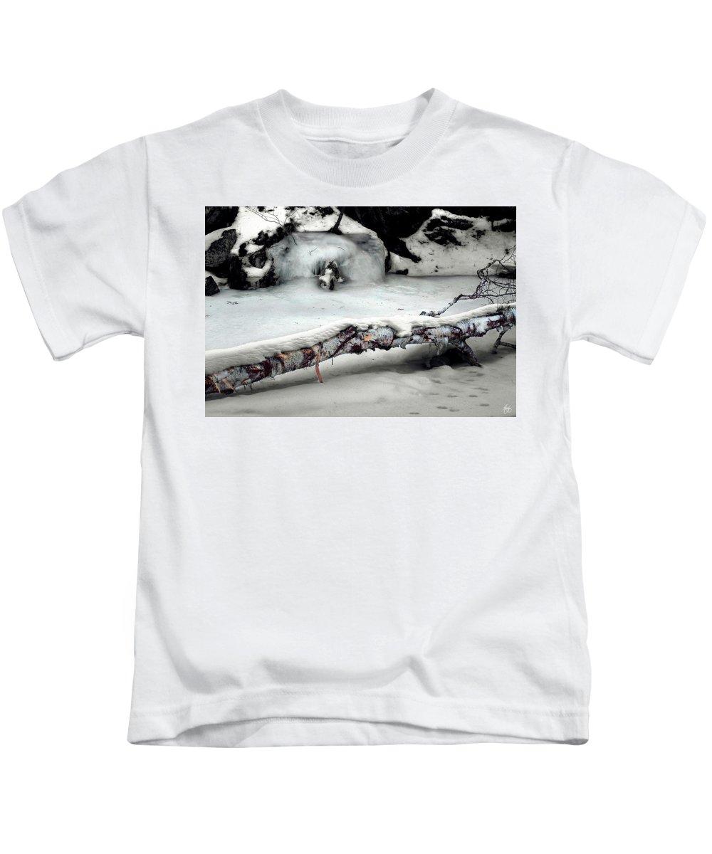 Birch Kids T-Shirt featuring the photograph Stinson Brook Birchfall by Wayne King