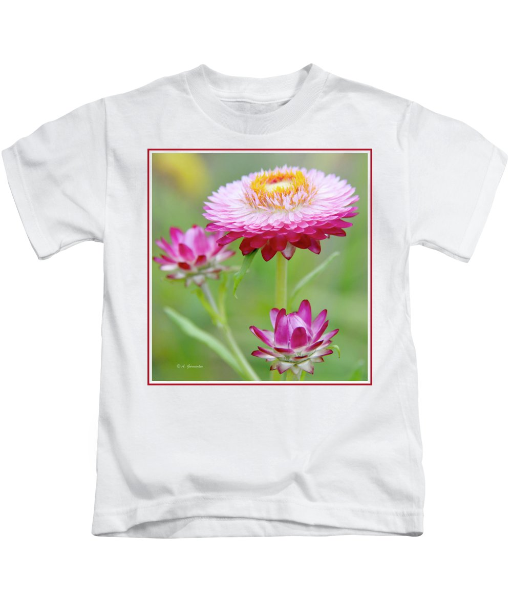 Macro Kids T-Shirt featuring the photograph Strawflower Blossoms by A Gurmankin