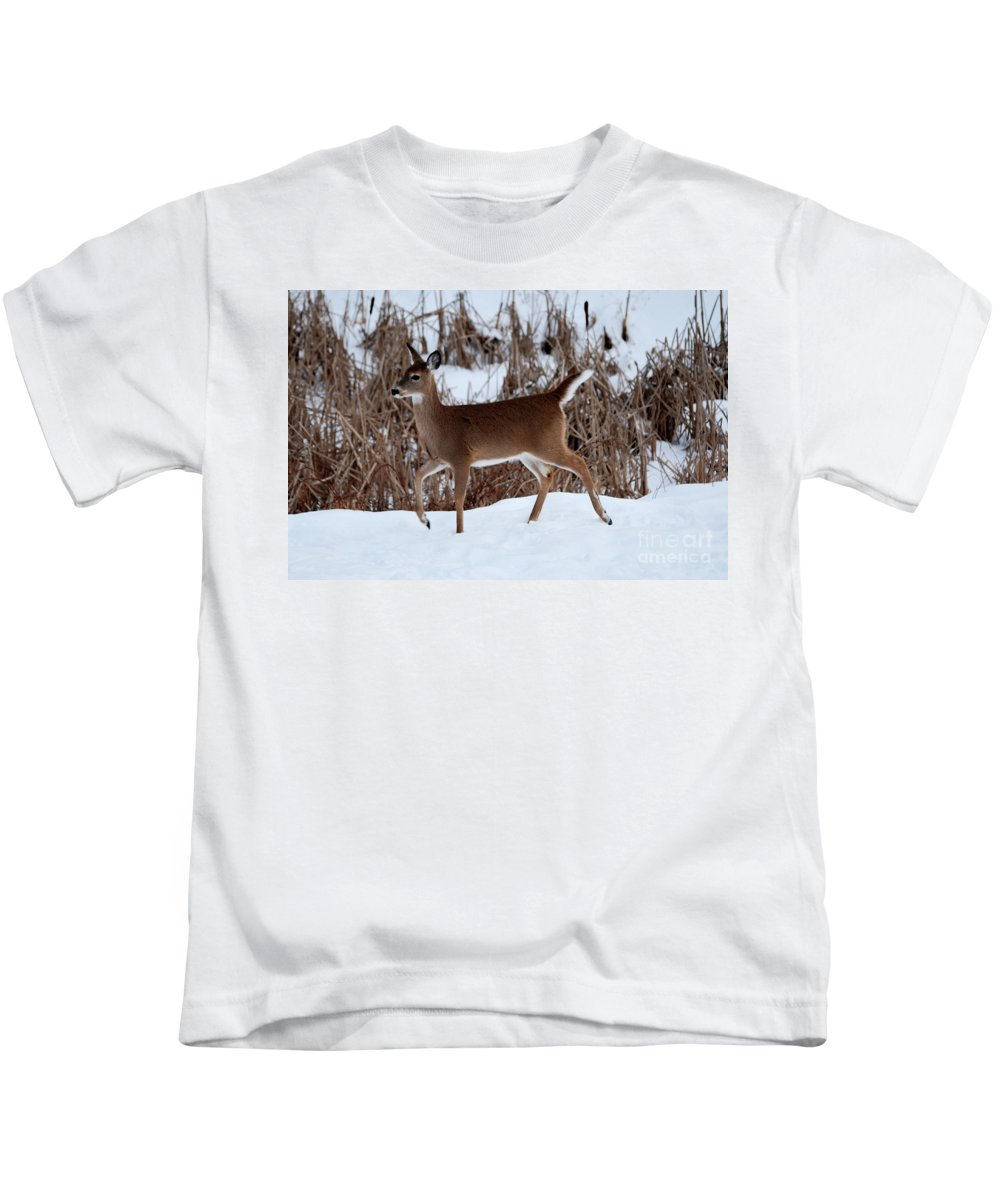Deer Kids T-Shirt featuring the photograph Strolling Along by Lori Tambakis