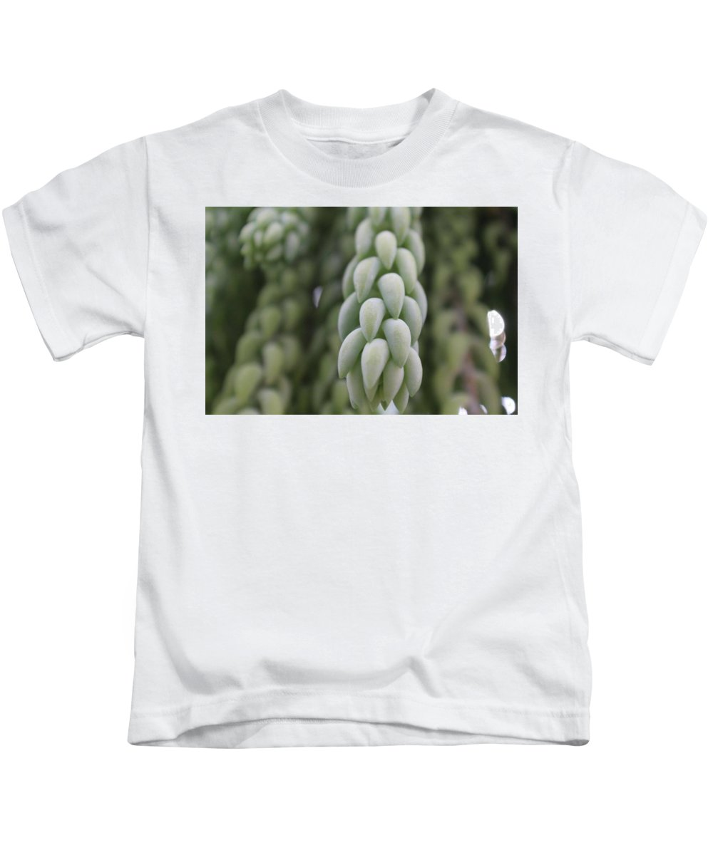 Green Kids T-Shirt featuring the photograph Succulent by Hailie Gillette