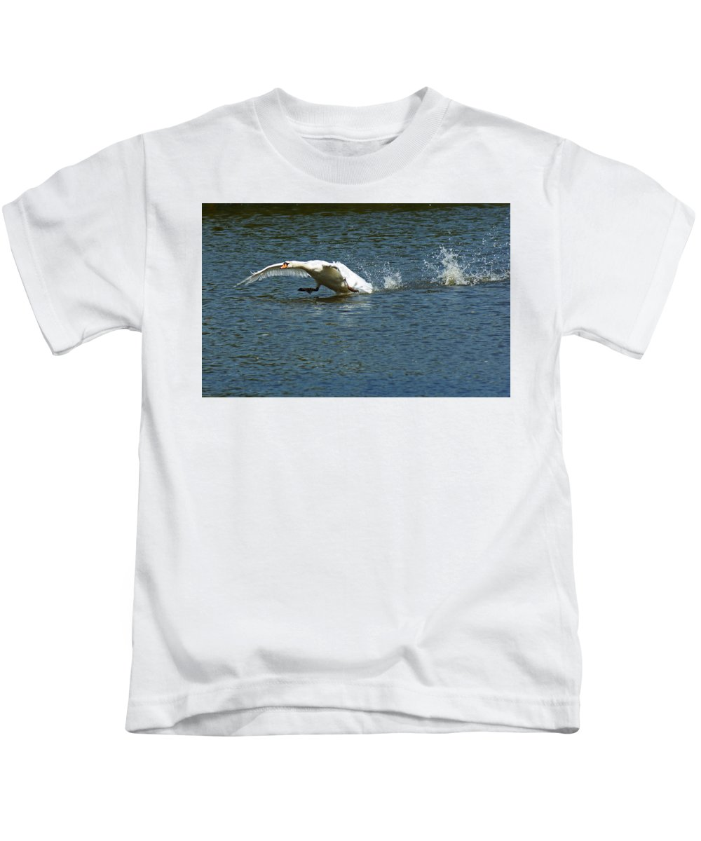 Swan Landing Kids T-Shirt featuring the photograph Swan Landing 2 by Maria Keady