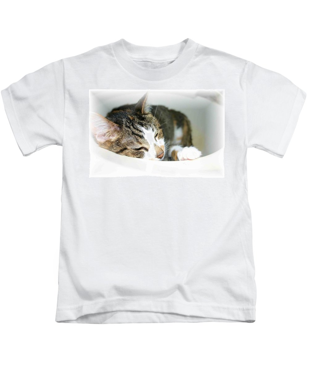 Cat Kids T-Shirt featuring the photograph Sweet Dreams by Nelson Strong