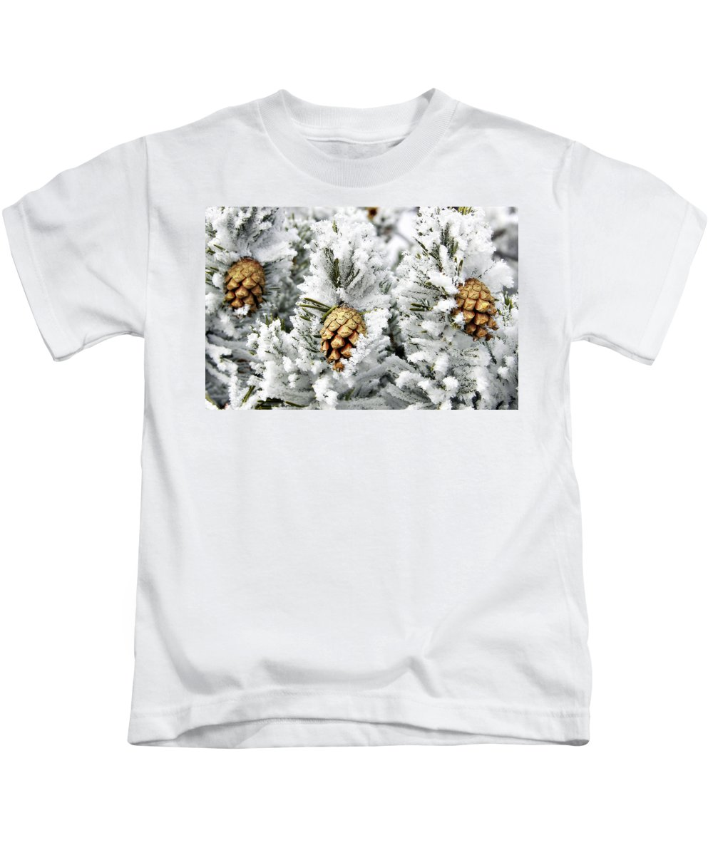 Frosty Kids T-Shirt featuring the photograph Three Pinecones by Marilyn Hunt