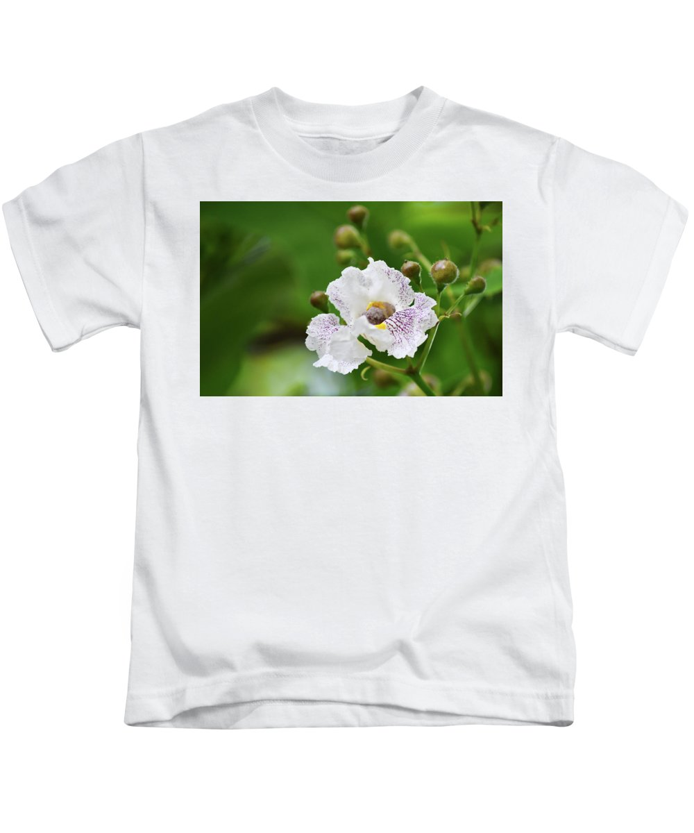 Blossom Kids T-Shirt featuring the photograph Tree Blossom by Maria Keady