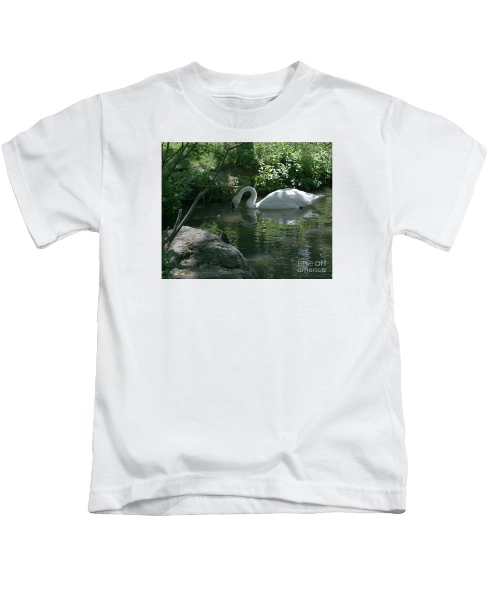 Trumpeter Swan Kids T-Shirt featuring the photograph Trumpeter Swan by Dawn Downour