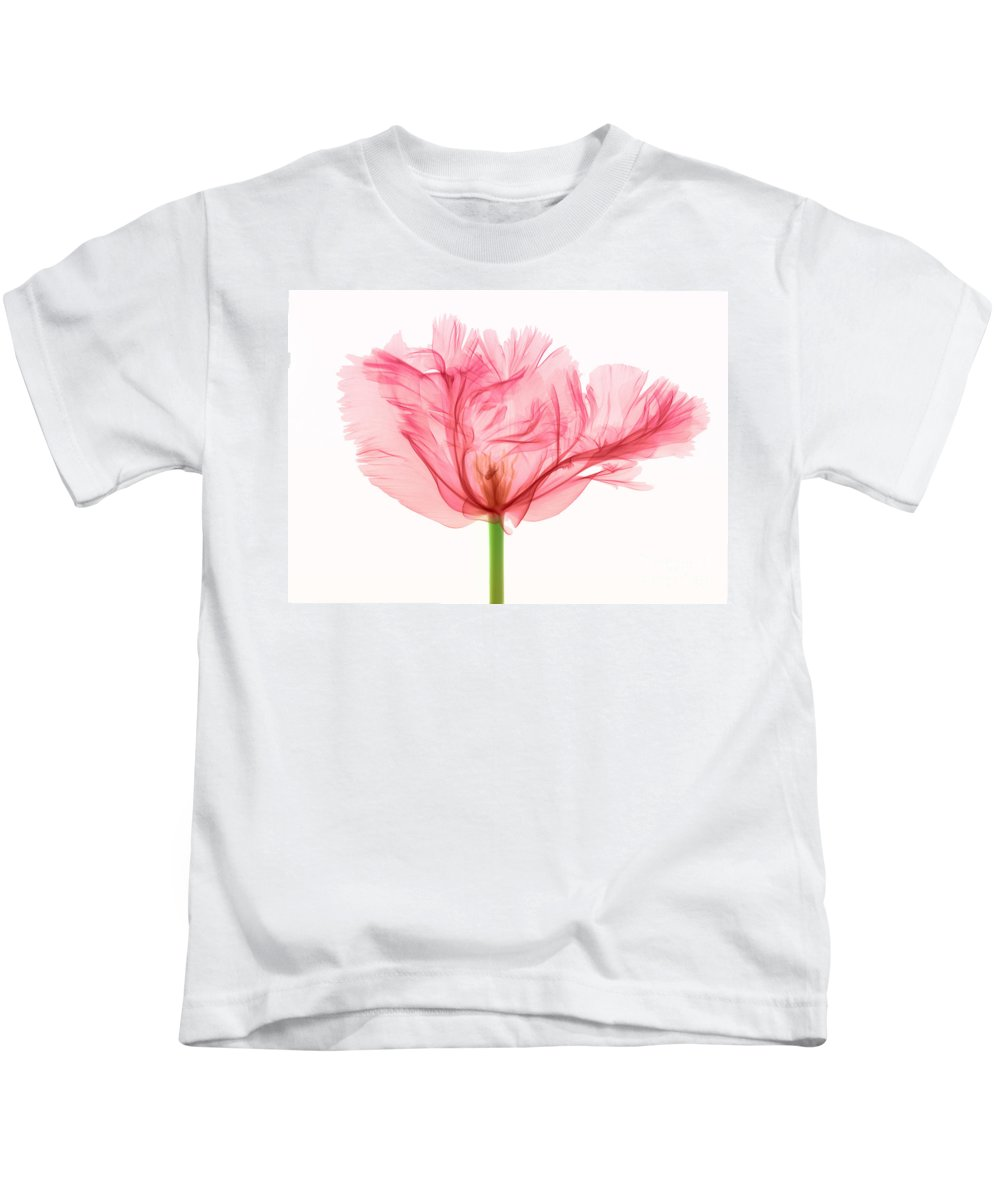 Science Kids T-Shirt featuring the photograph Tulip, X-ray by Ted Kinsman