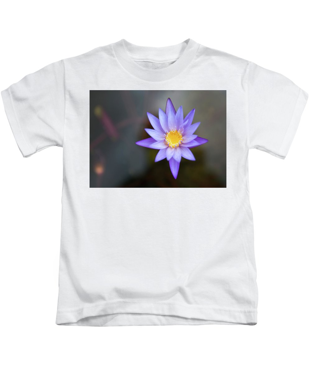 Water Lily Kids T-Shirt featuring the digital art Water Lily by Dorothy Binder