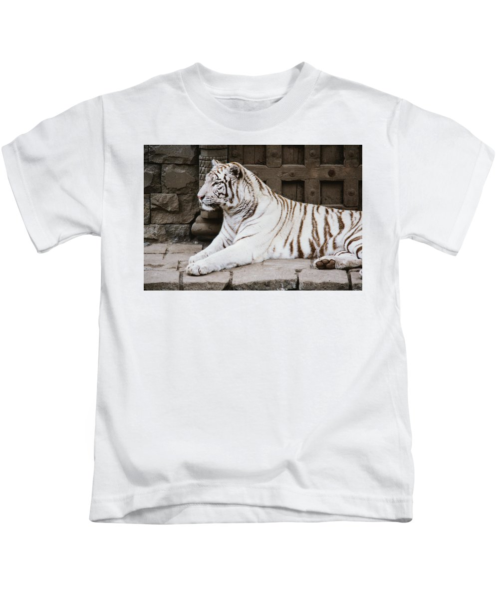 Majestic Kids T-Shirt featuring the photograph White Tiger by Pati Photography