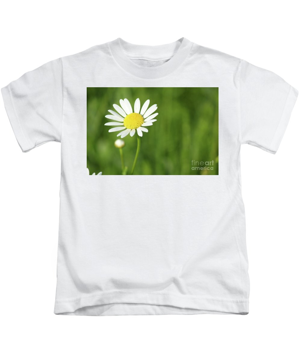 Camomile Kids T-Shirt featuring the photograph White Wild Flower Spring Scene by Goce Risteski