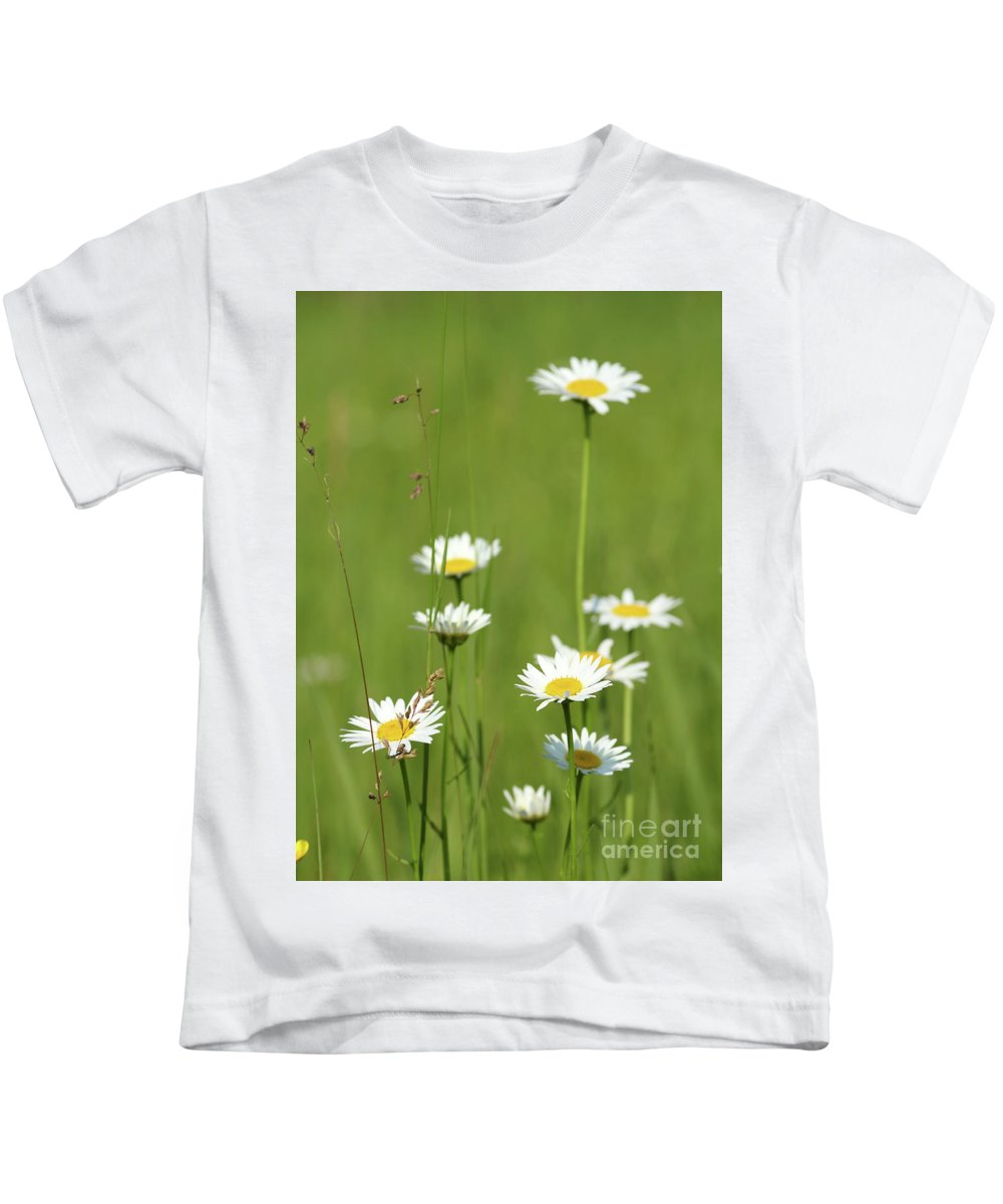 Camomile Kids T-Shirt featuring the photograph White Wild Flowers Nature Spring Scene by Goce Risteski