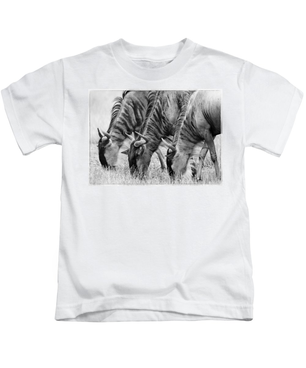 Africa Kids T-Shirt featuring the photograph Wildebeest Trio by Jack Daulton