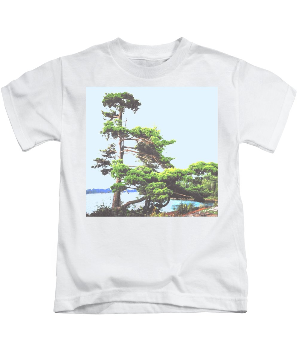 Pine Kids T-Shirt featuring the photograph Windswept by Ian MacDonald