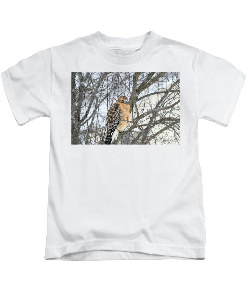 Hawk Kids T-Shirt featuring the photograph Winter Hawk by Jackson Pearson