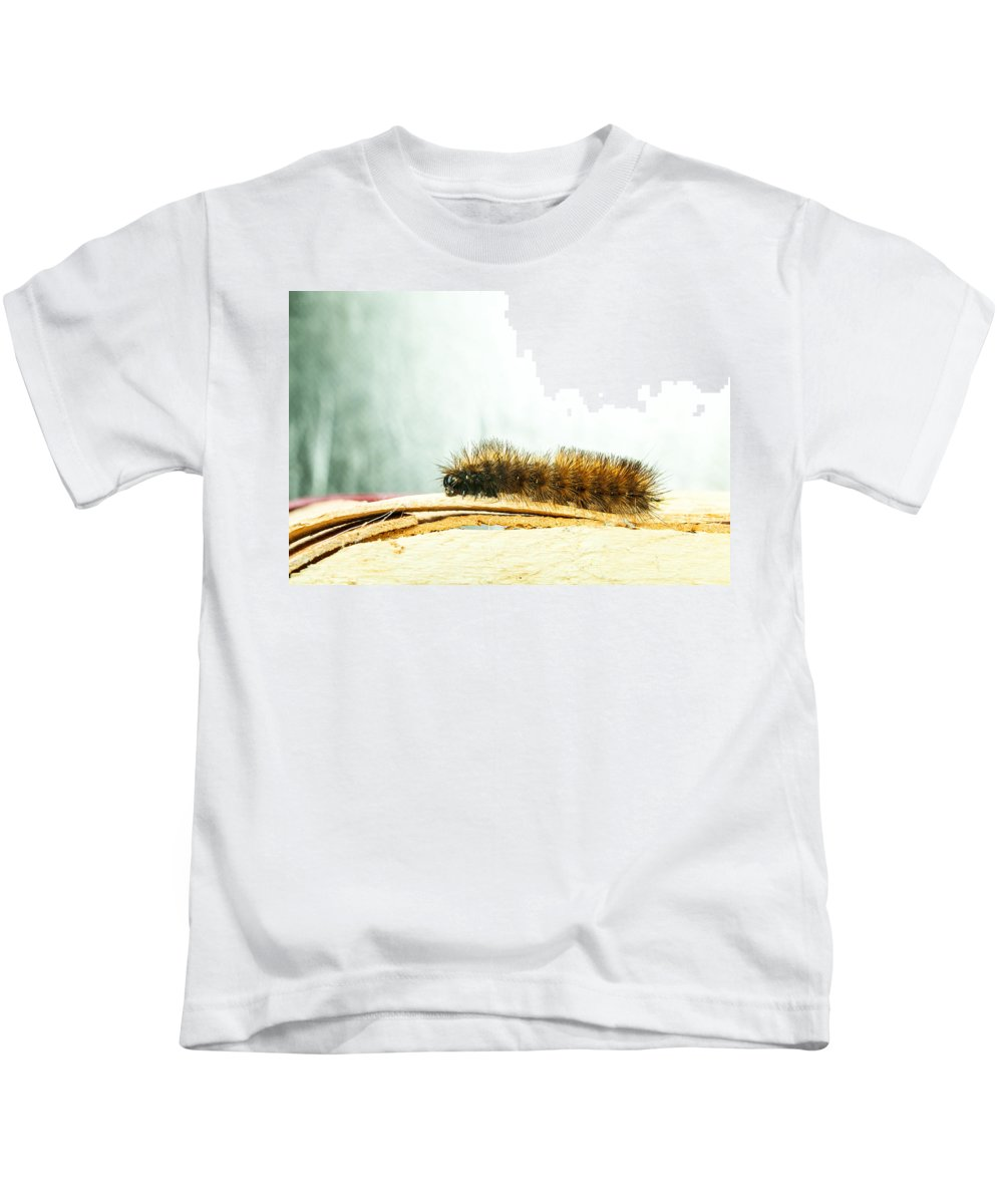 Pbh Art Inc Kids T-Shirt featuring the photograph Wooly Worm by Peggie Hensley