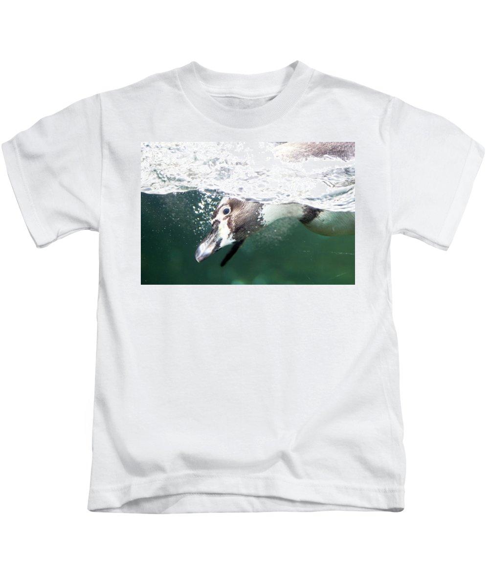 Humboldt Penguin Kids T-Shirt featuring the photograph Dive Penguin Dive by David Stasiak