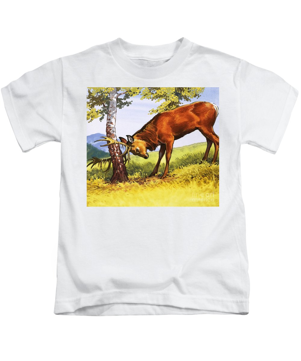 Deer Kids T-Shirt featuring the painting Red Deer Cleaning Antlers by English School