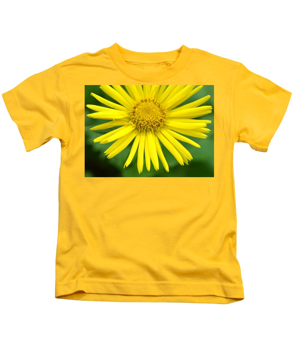 Colorful Kids T-Shirt featuring the photograph Dsc343d-002 by Kimberlie Gerner