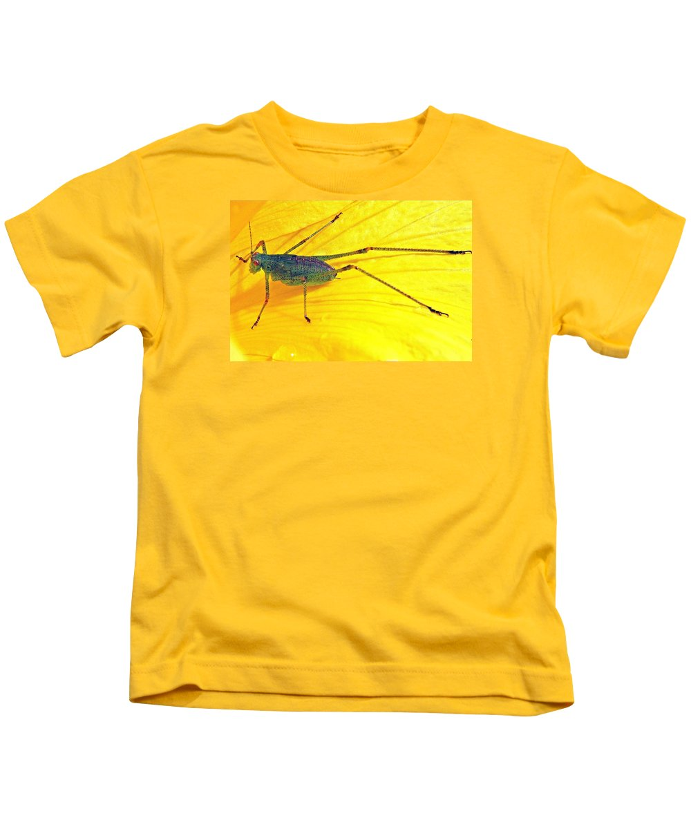 Grasshopper Kids T-Shirt featuring the photograph Grasshopper by FL collection