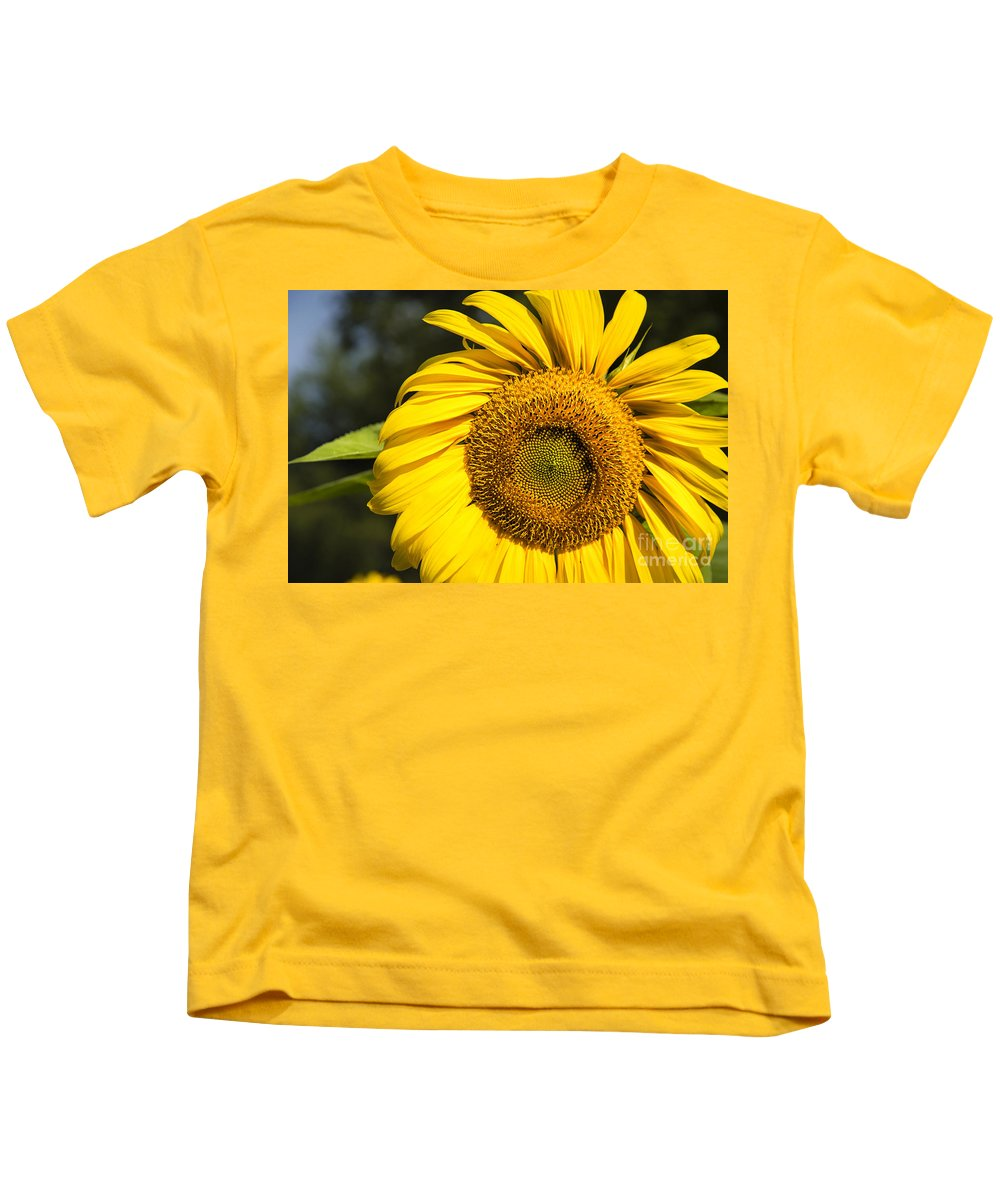 Timothy Hacker Kids T-Shirt featuring the photograph Sunflower Close by Timothy Hacker