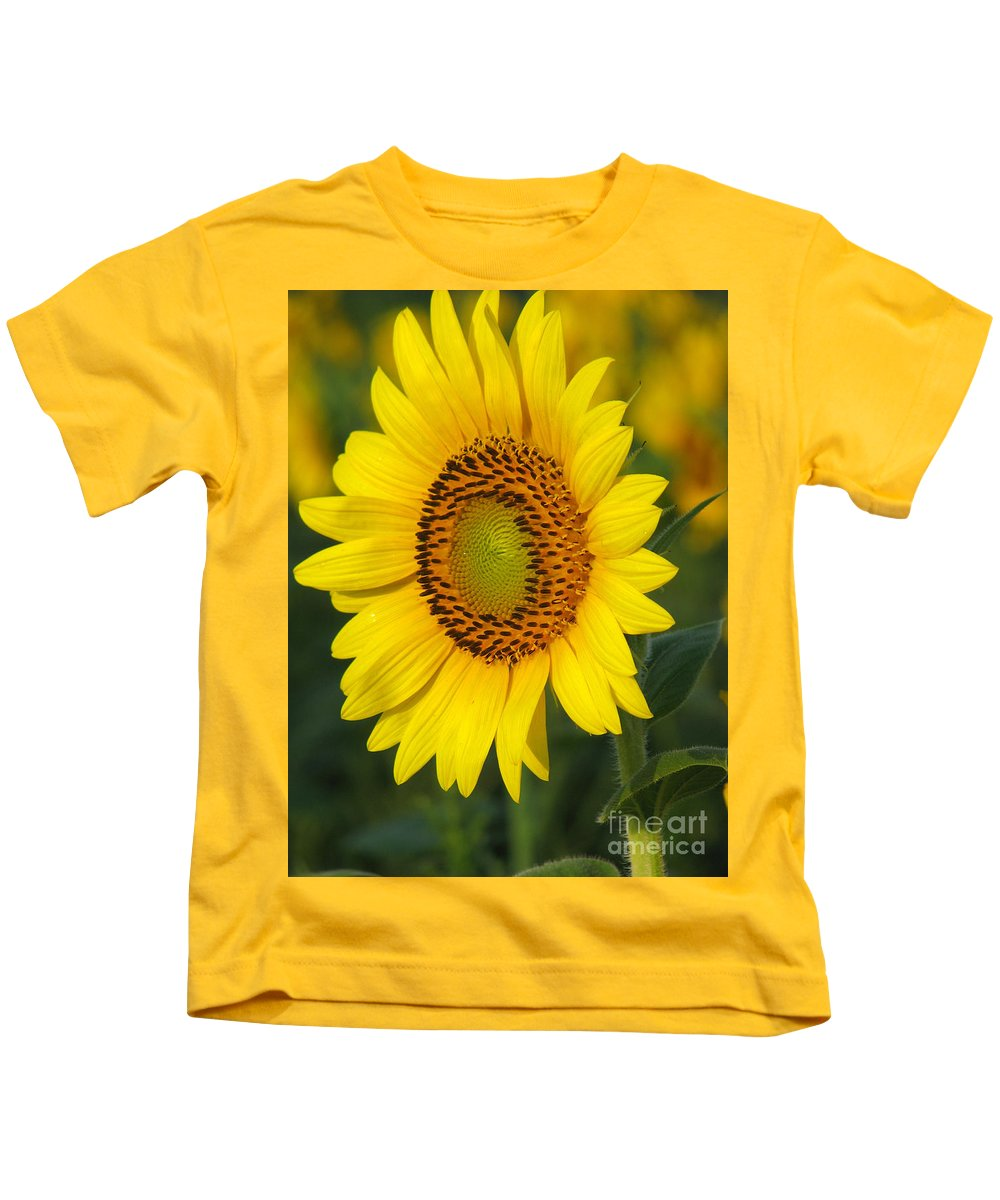Sunflowers Kids T-Shirt featuring the photograph Sunflower by Amanda Barcon
