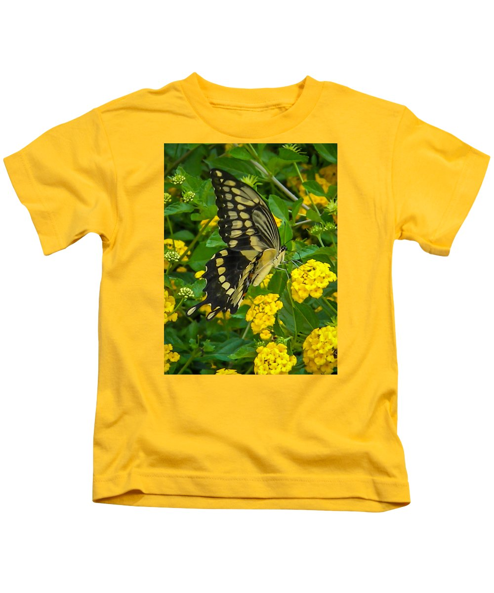 Kids T-Shirt featuring the photograph Butterfly 3 by Reed Tim