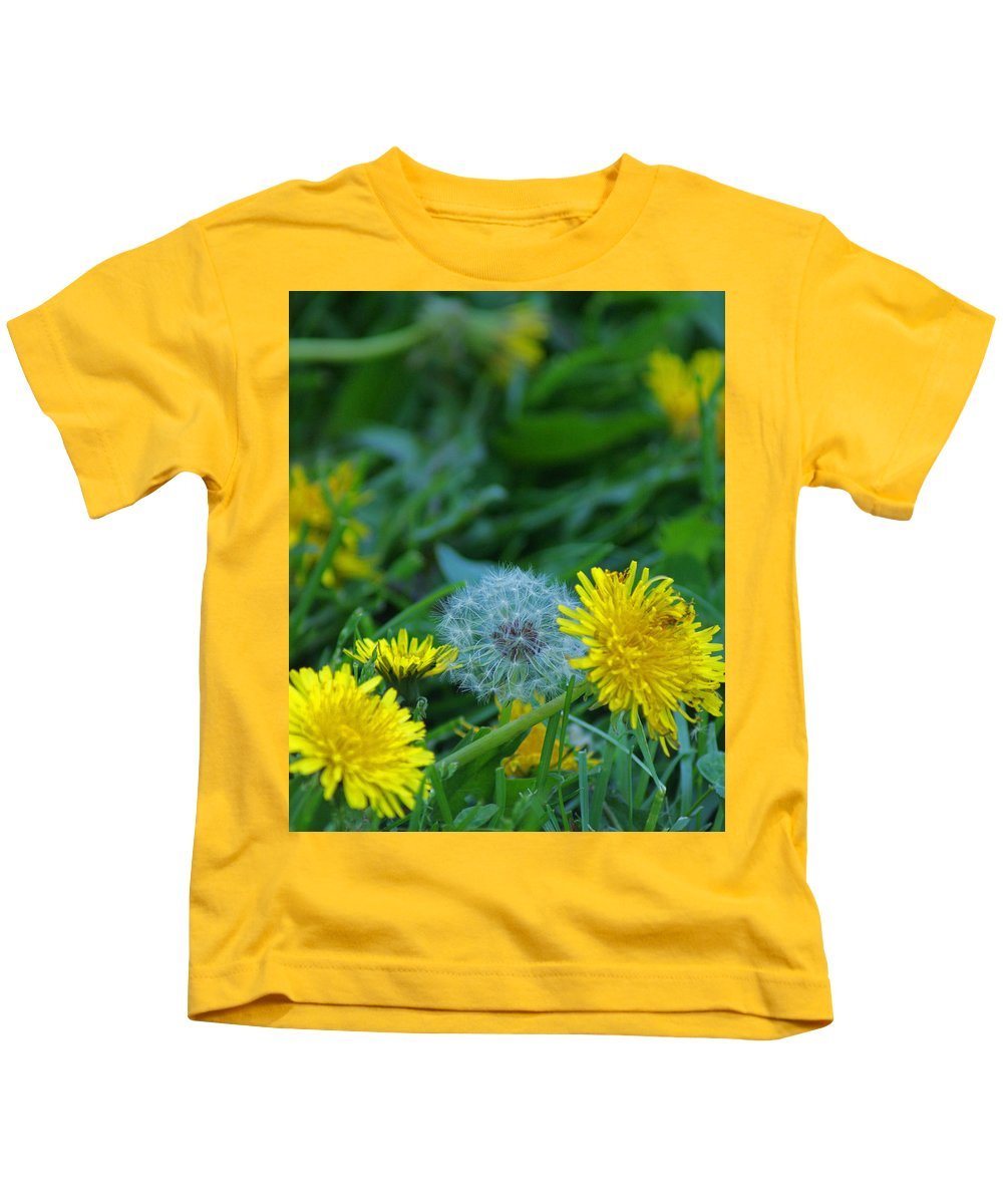 Dandelions Kids T-Shirt featuring the photograph Dandelions, Young And Old by Maria Keady