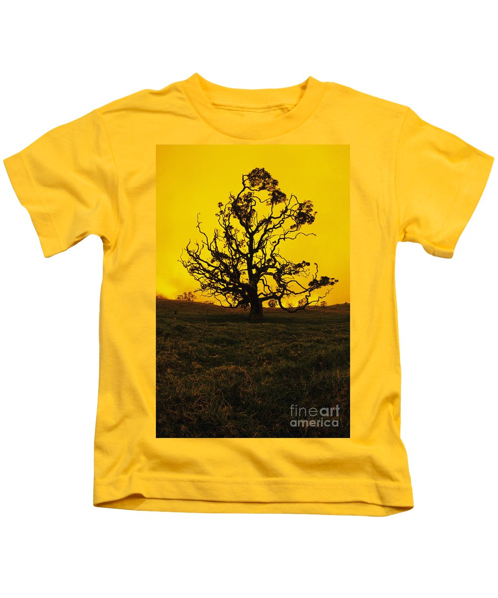 Alone Kids T-Shirt featuring the photograph Koa Tree Silhouette by Carl Shaneff - Printscapes
