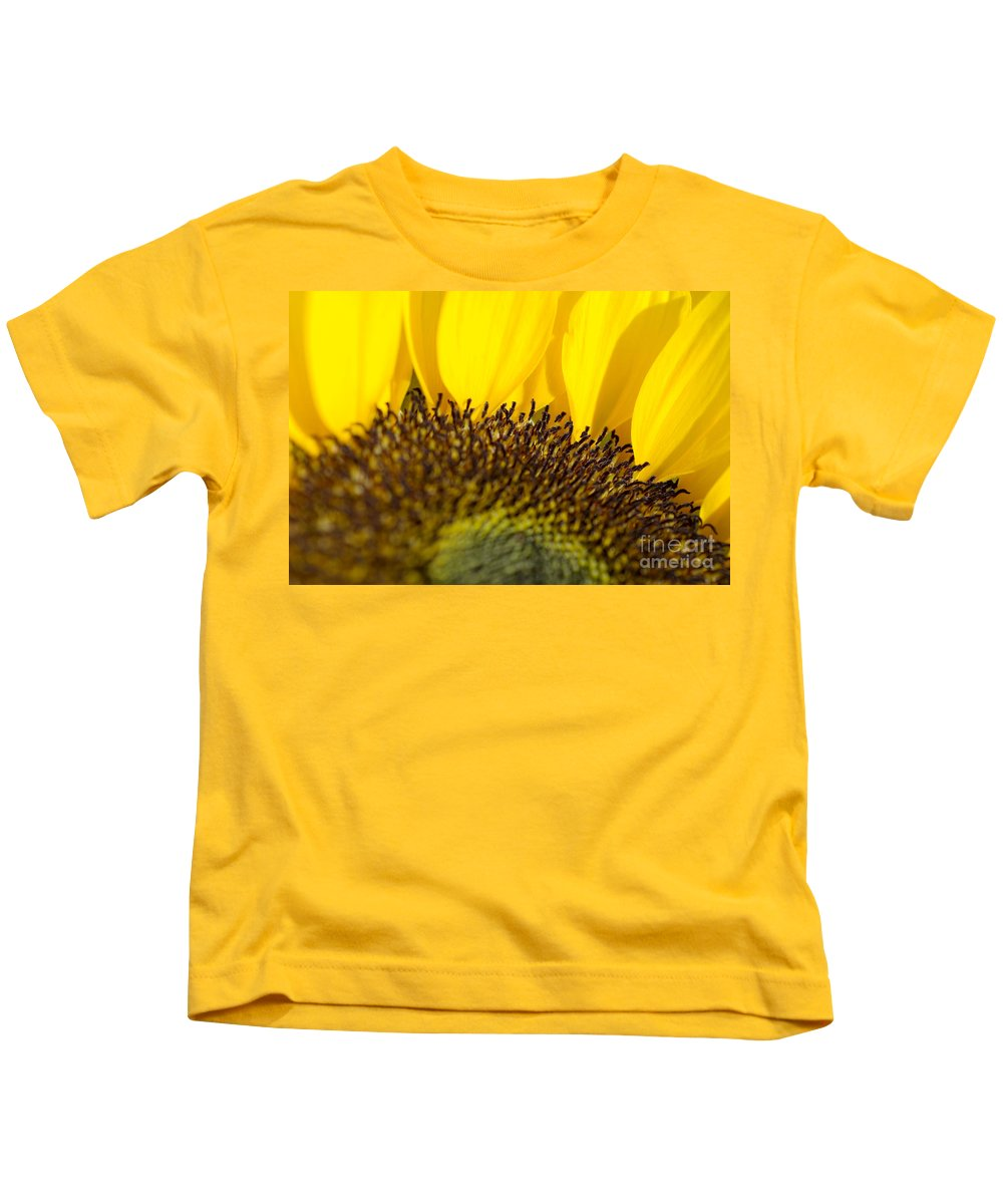 83-pfs0168 Kids T-Shirt featuring the photograph Sunflower Detail by Ray Laskowitz - Printscapes