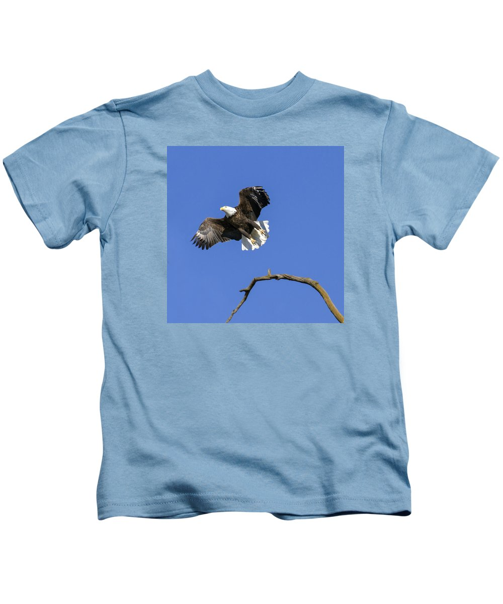 Eagle Kids T-Shirt featuring the photograph King Of The Sky 4 by David Lester
